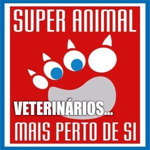 medicos-veterinarios-serviços